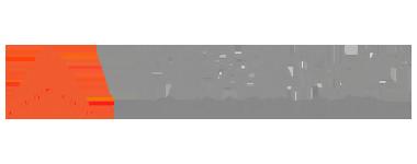 DEWESoft - Logo